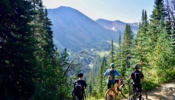 Personas disfrutando de los beneficios de montar bicicleta