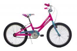 B110 Bic. 20 Julen Bernice Alloy